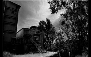 """1º premio fotografía amateur - Carolina Lindner - """"Por caminos desandados"""" bis"""